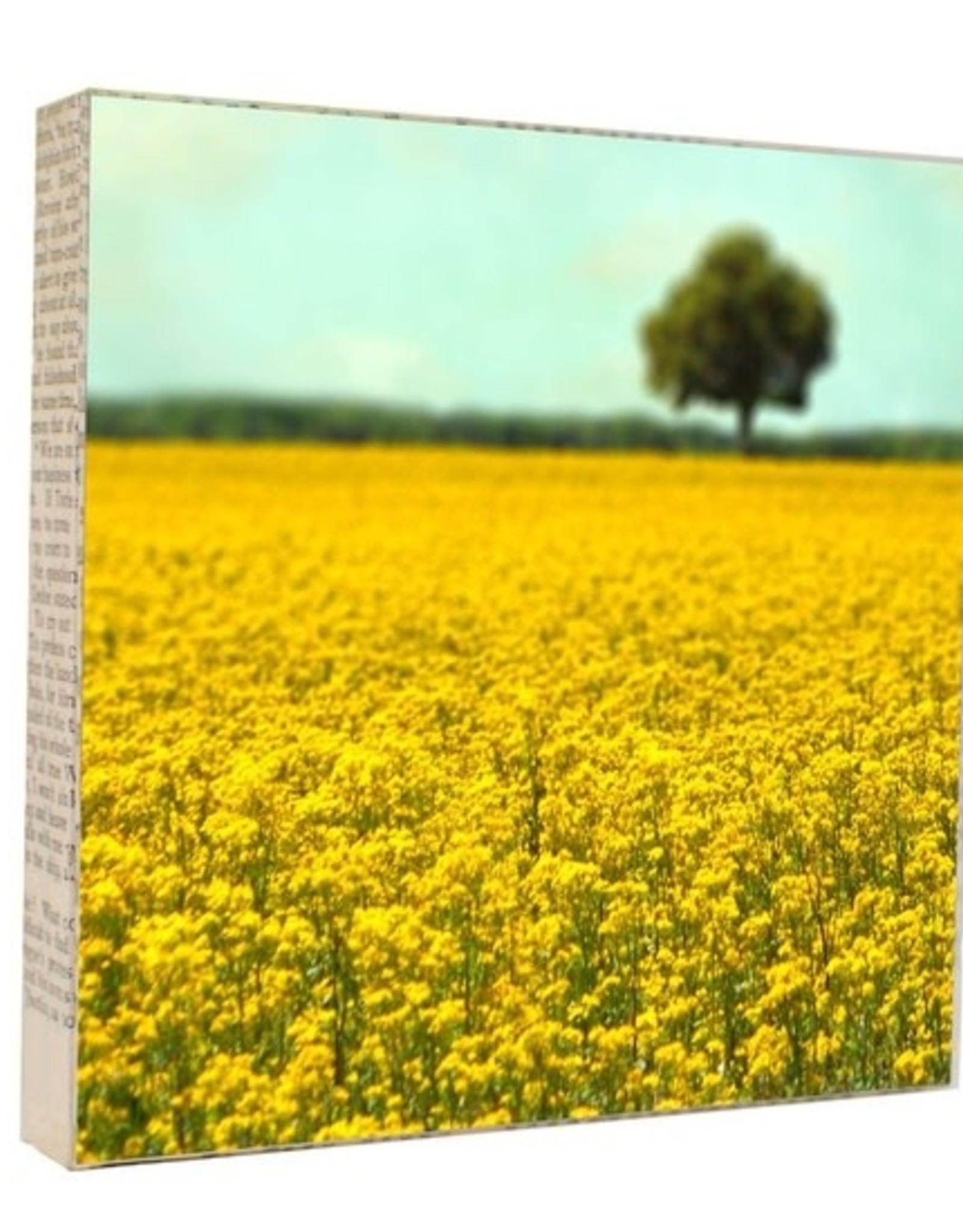 MKC Photography Yellow Fields Art Block
