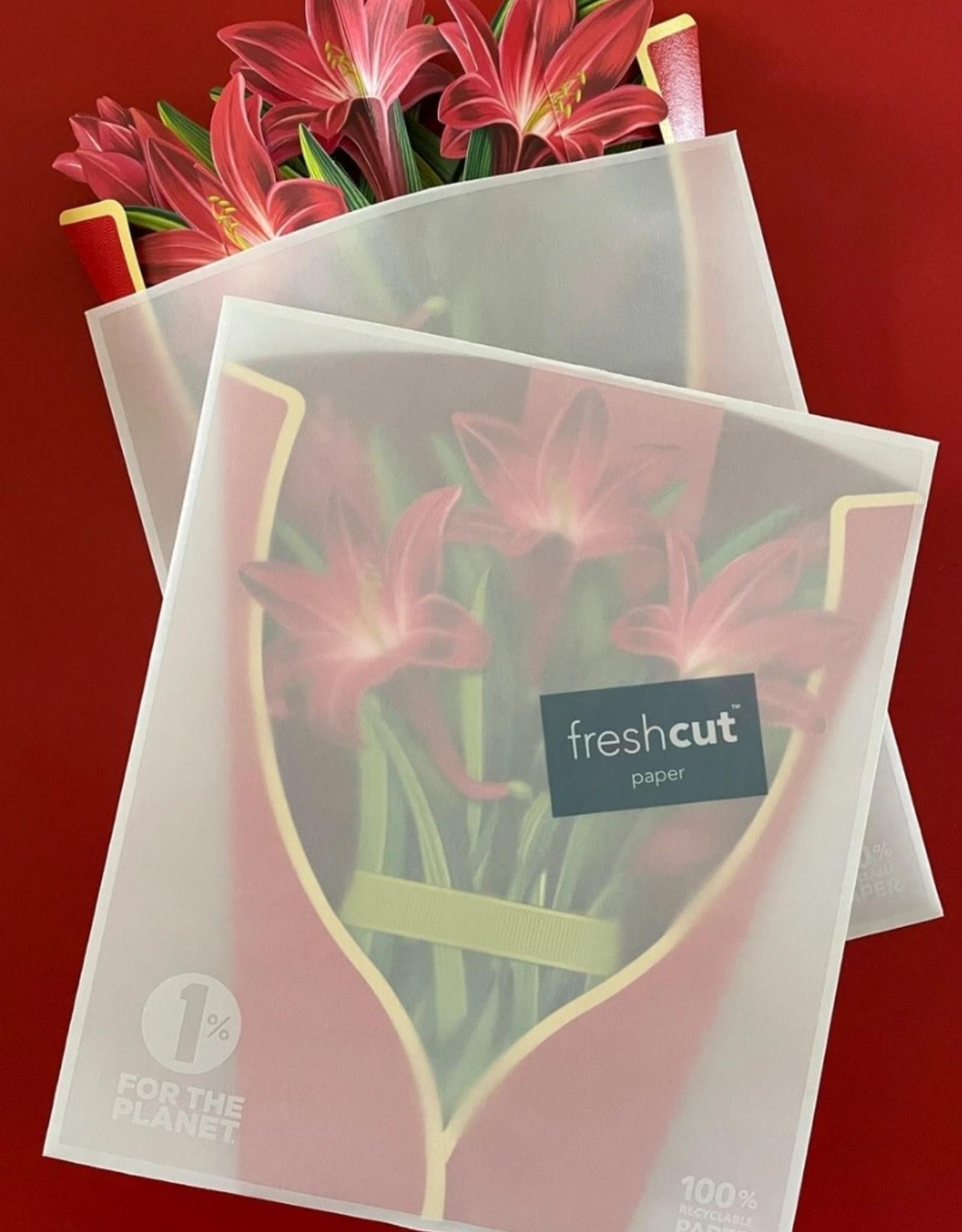 Fresh Cut Paper Red Amaryllis