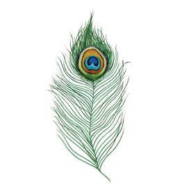 Tattly Peacock Feather