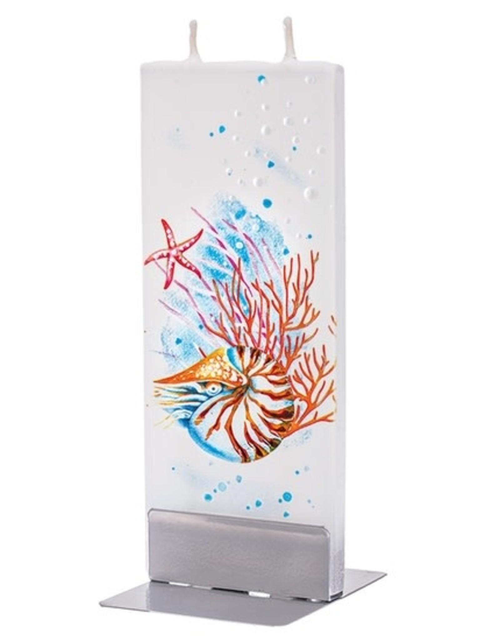 Flatyz Nautilus, Starfish & Coral