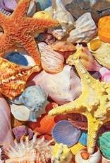 White Mountain Puzzles Beach Shells 500pc Puzzle