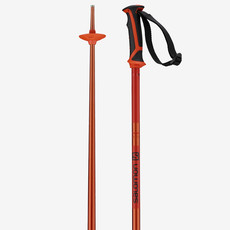 Salomon ARCTIC POLE