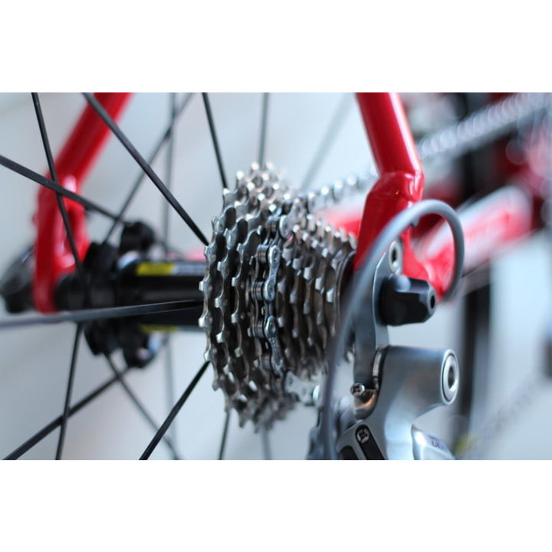 Pro Bike Tune