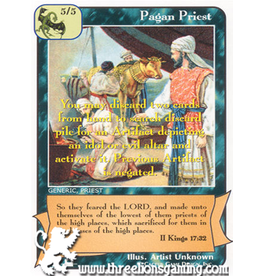 Priests: Pagan Priest