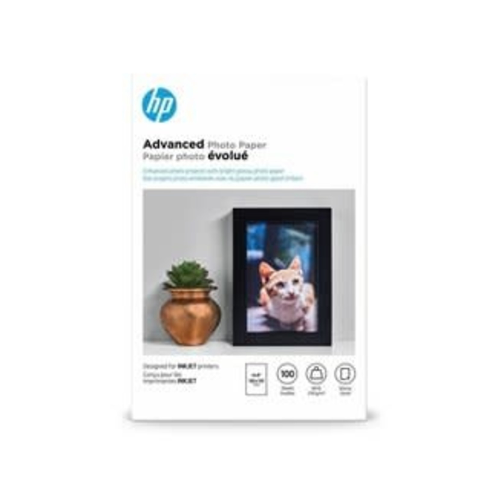 HP Advanced Glossy Photo Paper - Q6638A (100)