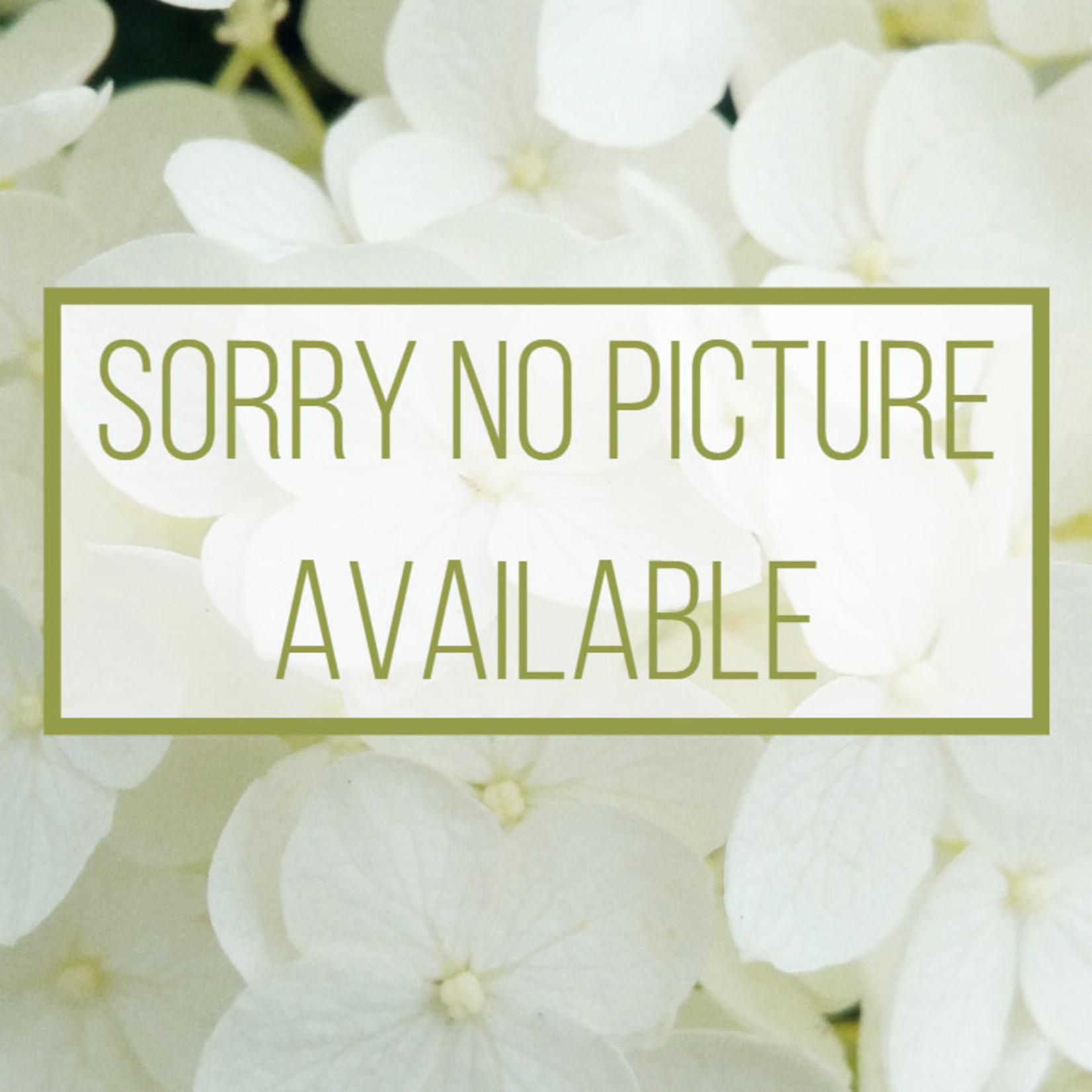 """Mr. Tweed Weed Barrier Platinum 45""""x150ft"""