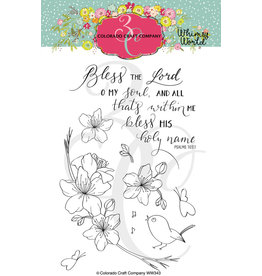 Colorado Craft Company Clear Stamp, Whimsy World - Bless The Lord