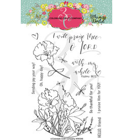 Colorado Craft Company Clear Stamp, Whimsy World - My Whole Heart