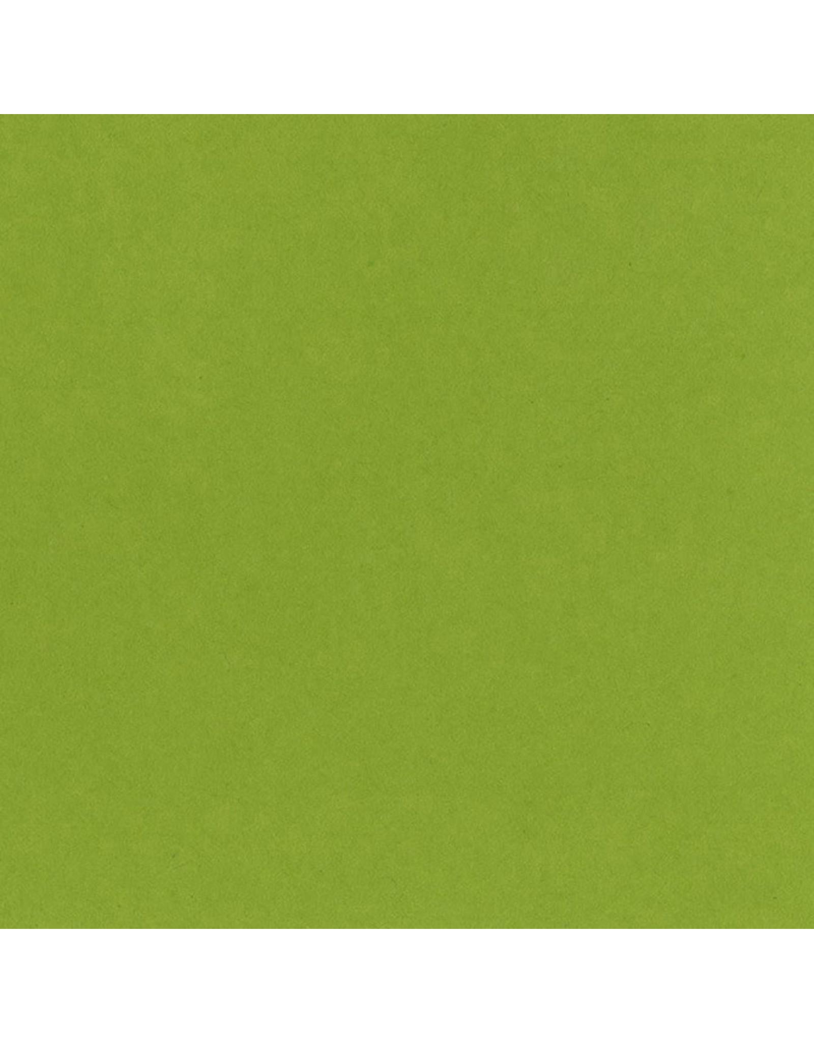 Bazzill Bazzill Card Shoppe 8.5x11 - Easter Grass