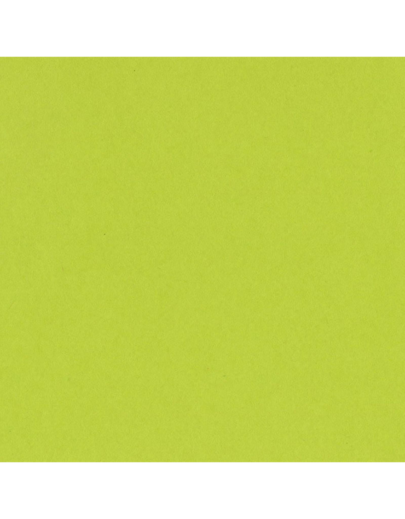 Bazzill Bazzill Card Shoppe 8.5x11 - Juicy Pear