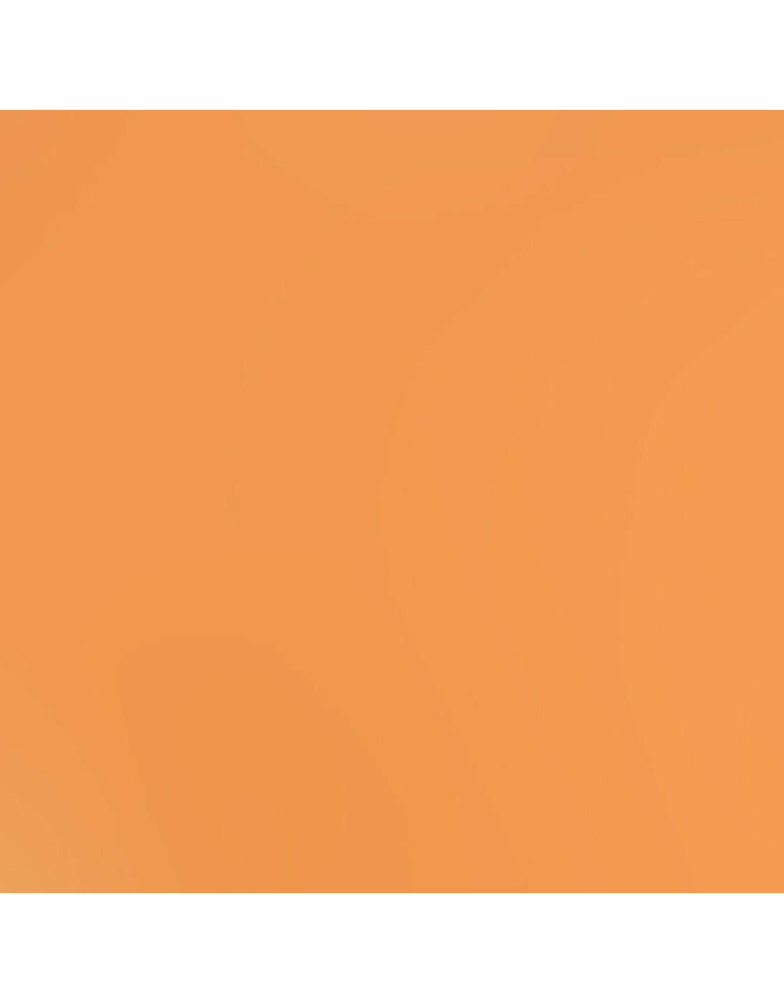 Bazzill Bazzill Card Shoppe 8.5x11 - Citrus Slice