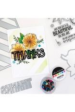 Catherine Pooler Designs Beautiful Day Bundle Diagonal Stripe Cover Plate Die