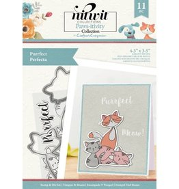 Crafter's Companion Nitwit Clear Stamp & Die Set, Pawsitivity - Purrfect