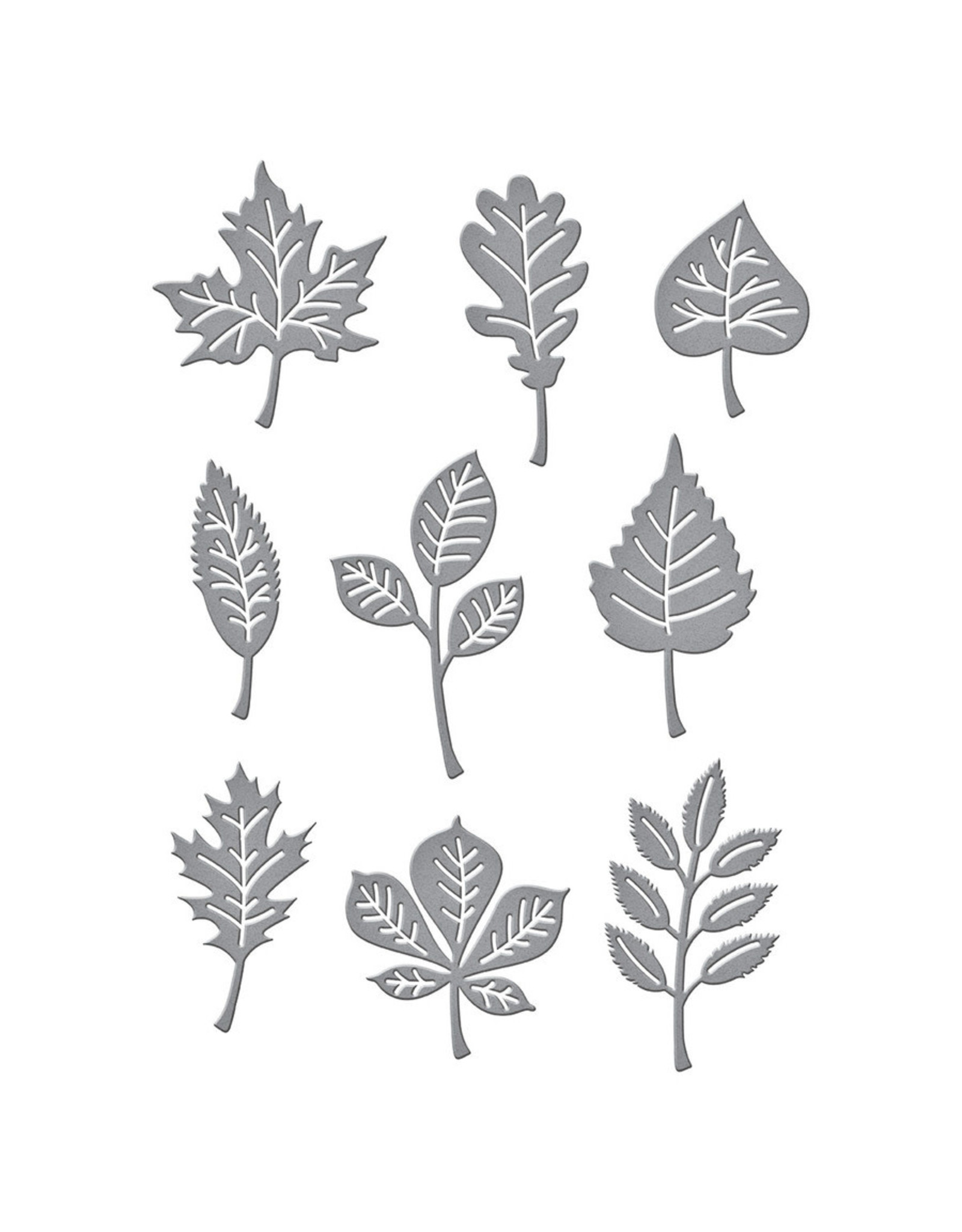 Spellbinders Autumn Leaves Die