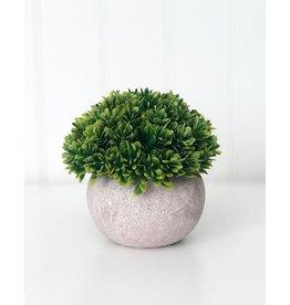 Foundations Décor Tray Decor - Stone Pot & Foliage