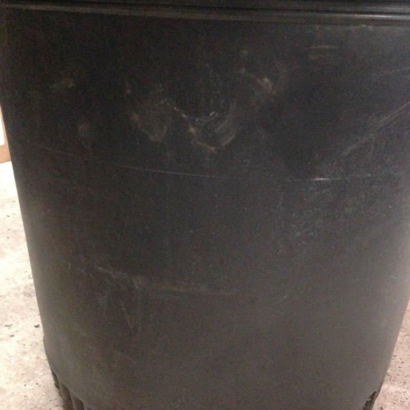 BLACK PLASTIC NURSERY POT 10 GALLON