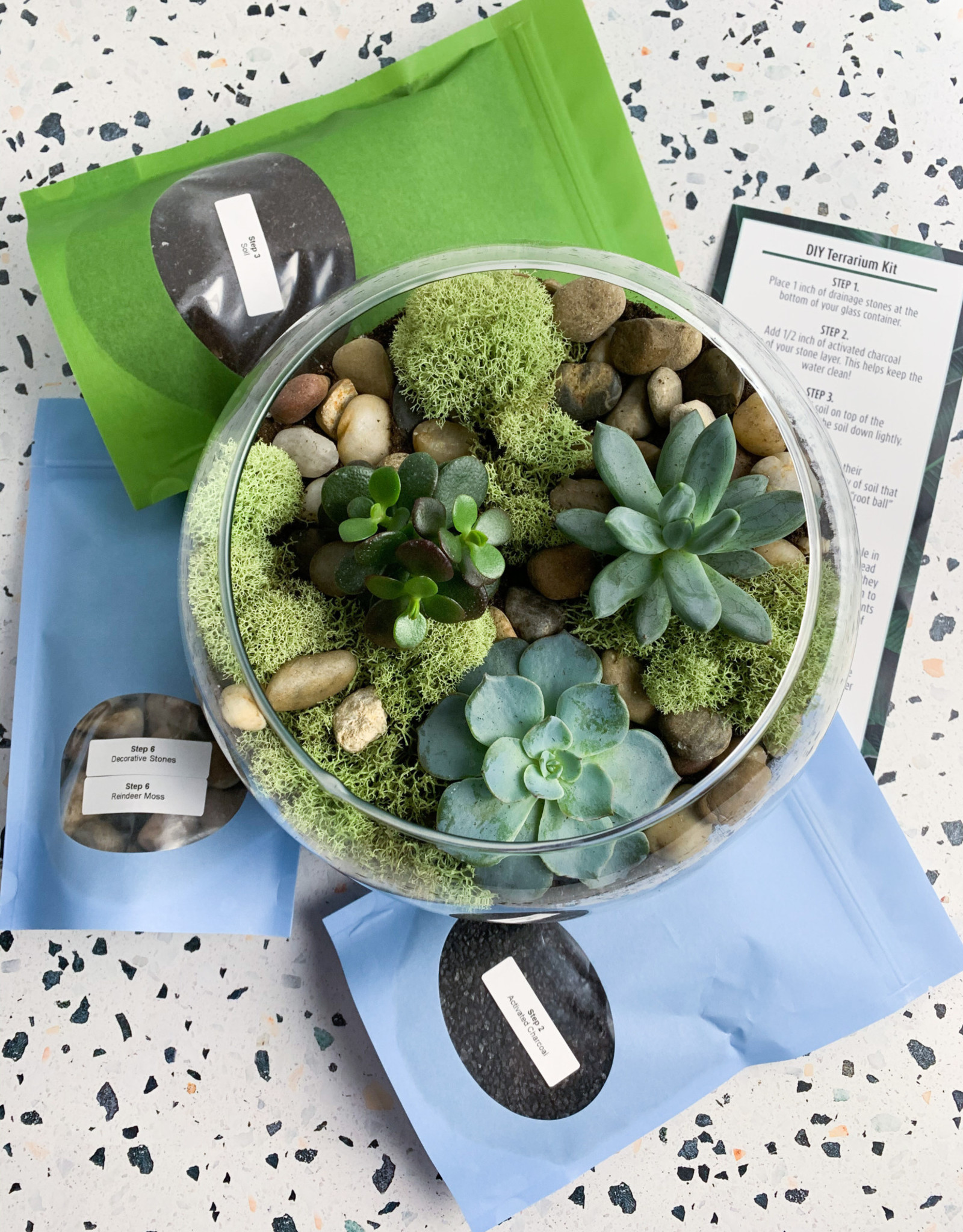 "DIY Terrarium Kit in 8"" Glass Globe"