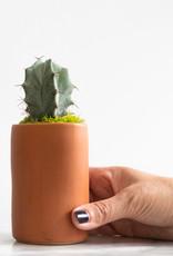 Mini Cactus with Planter #2