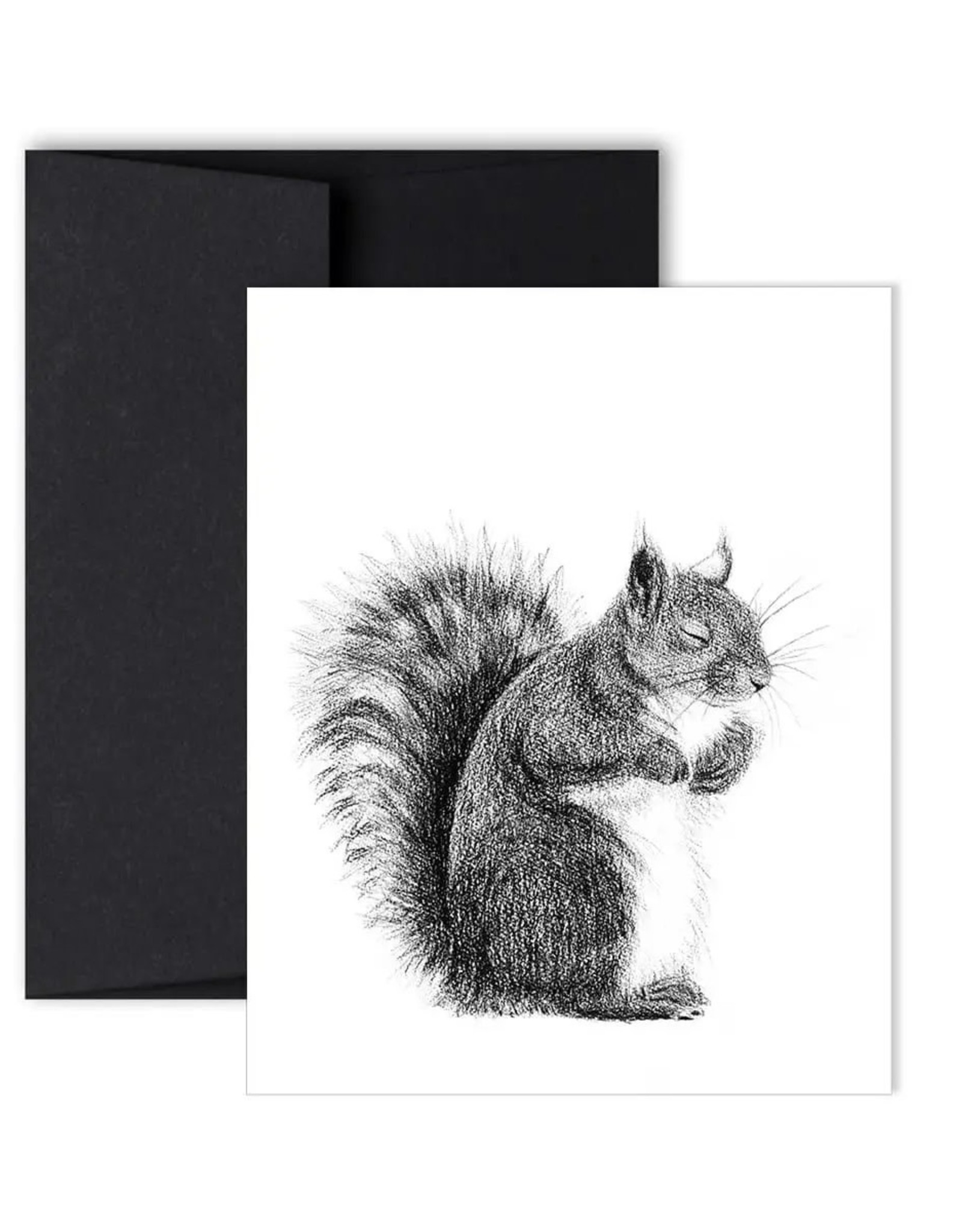 Le Nid - Sleeping Squirrel