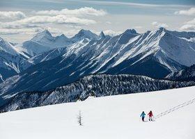 Ski / Planche