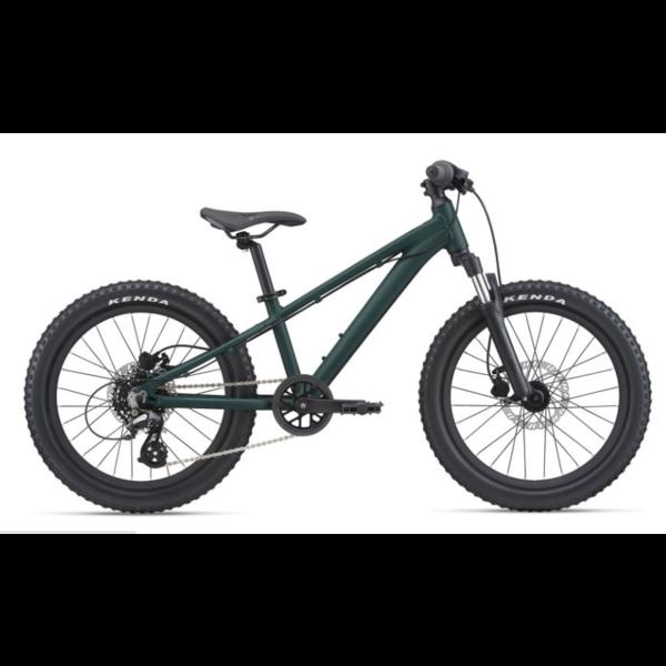 GIANT STP 20 FS - Vélo de montagne enfant 5 à 8 ans