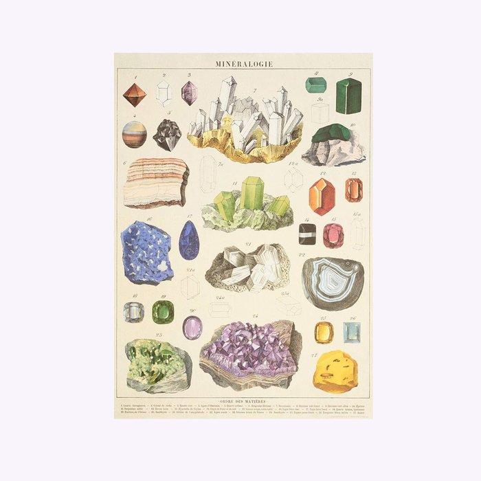 Cavallini Mineralogy Poster