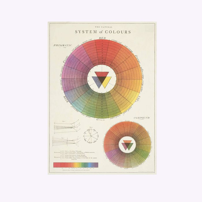 Cavallini Cavallini Color System Poster