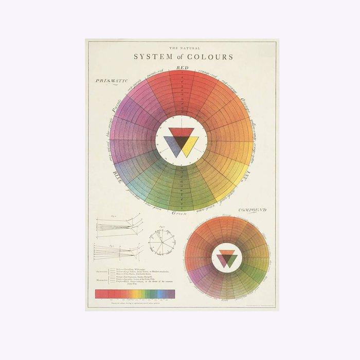 Cavallini Color System Poster