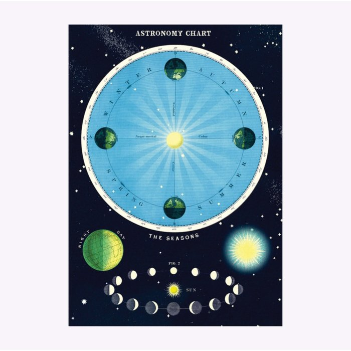 Cavallini Astronomy Chart Poster