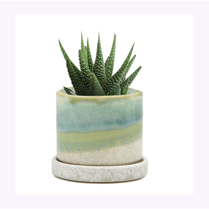 Chive Small Green Ciment Minute Planter