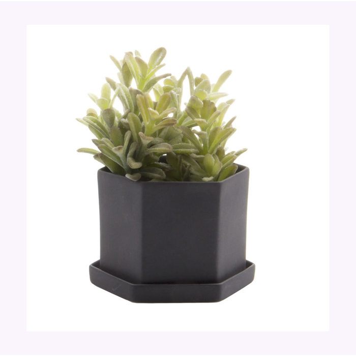 Chive Black Hexi Planter