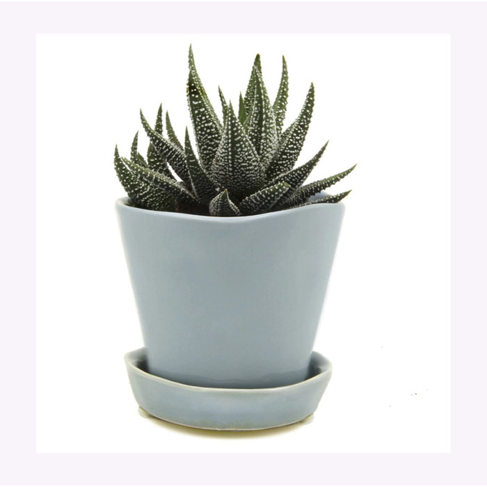 Petit cache-pot Tika bleu gris Chive