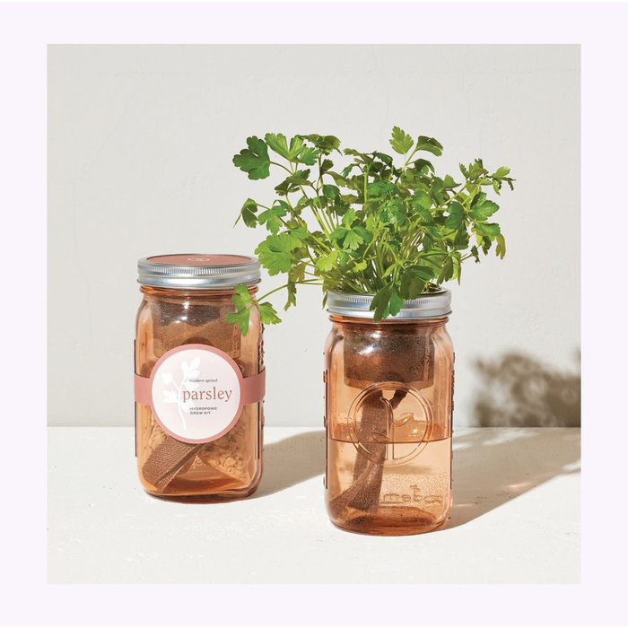 Modern Sprout Parsley Garden Jar