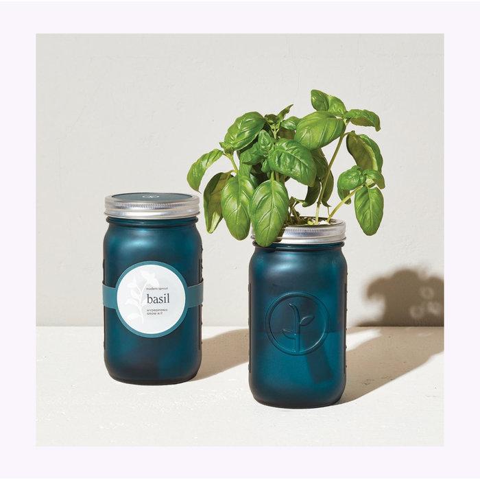 Kit d'herboristerie Modern Sprout Basilic