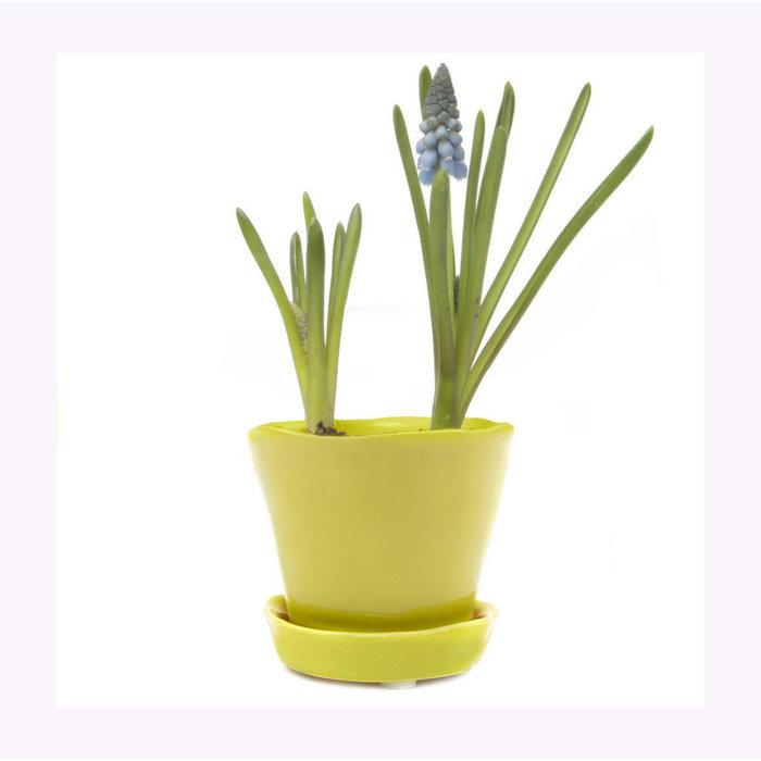 Chive Green Sheen Tika Planter