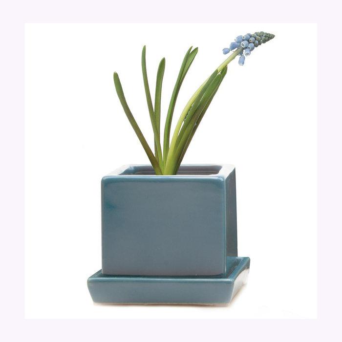 Chive Petit cache-pot Cube bleu Chive