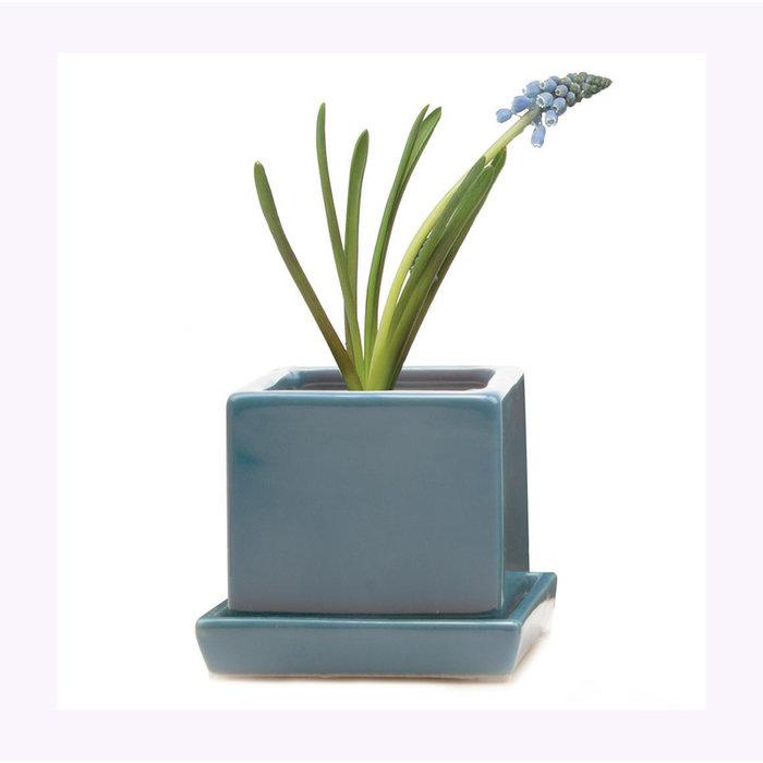 Petit cache-pot Cube bleu Chive