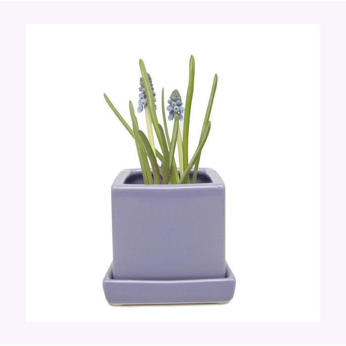 Petit cache-pot Cube Periwinkle Chive