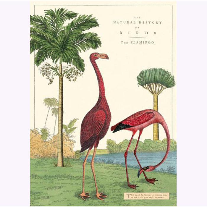 Cavallini Flamingo Poster
