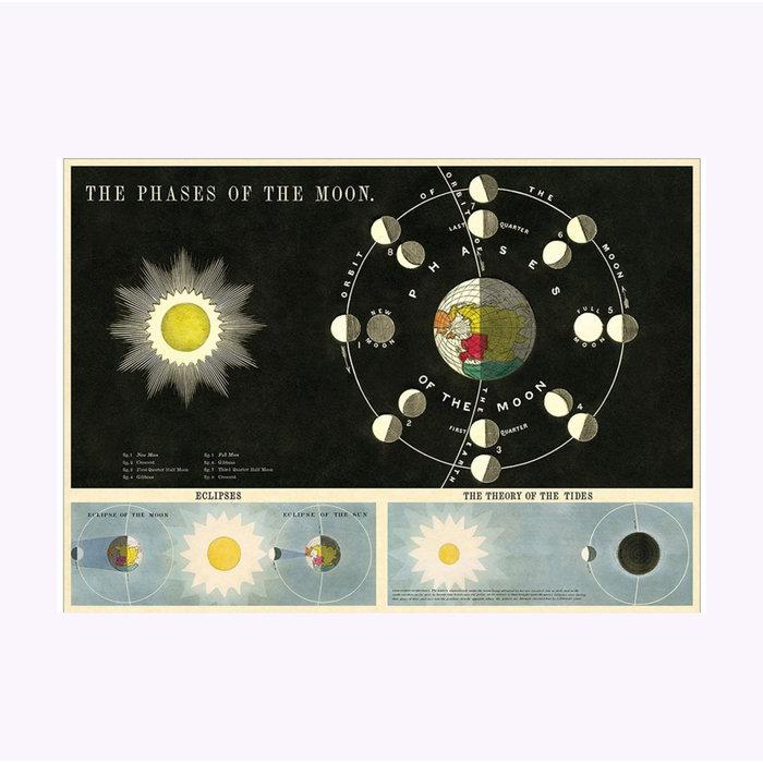 Cavallini Moon Phases Poster