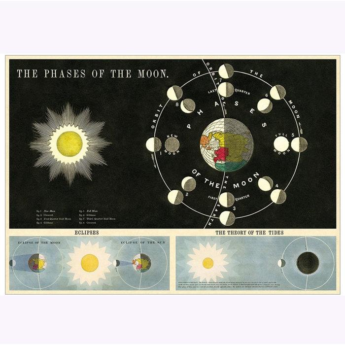 Affiche Phases lunaires Cavallini