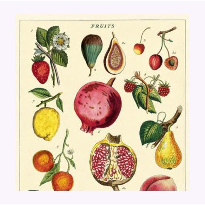 Cavallini Fruits 2 Poster
