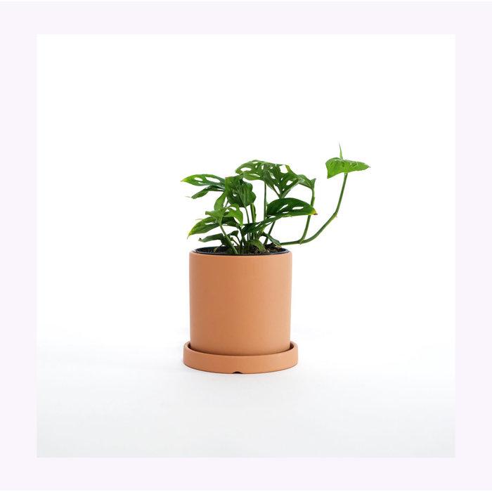 Cache-Pot Céramique avec soucoupe