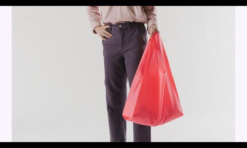 Baggu sac réutilisable