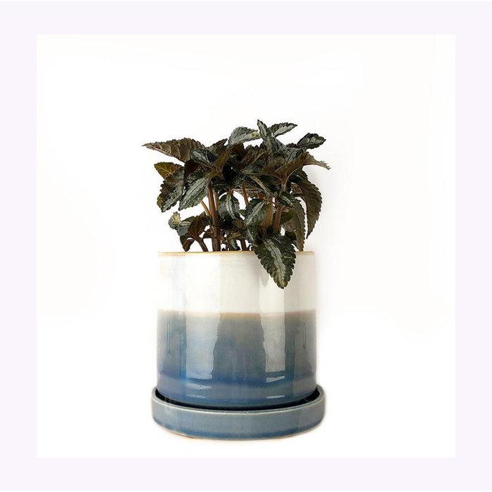 Cache-Pot Big Minute Blue Layers Chive