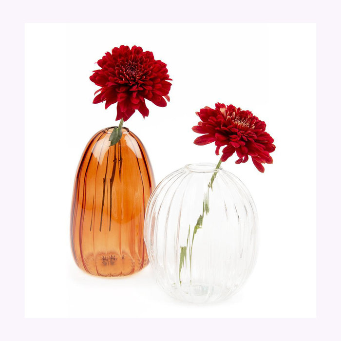 Chive Vase Squish Chive