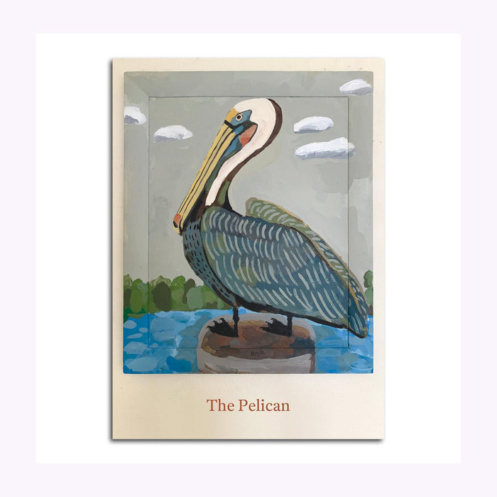 Michael Doyle Carte Postale Pelican Michael Doyle