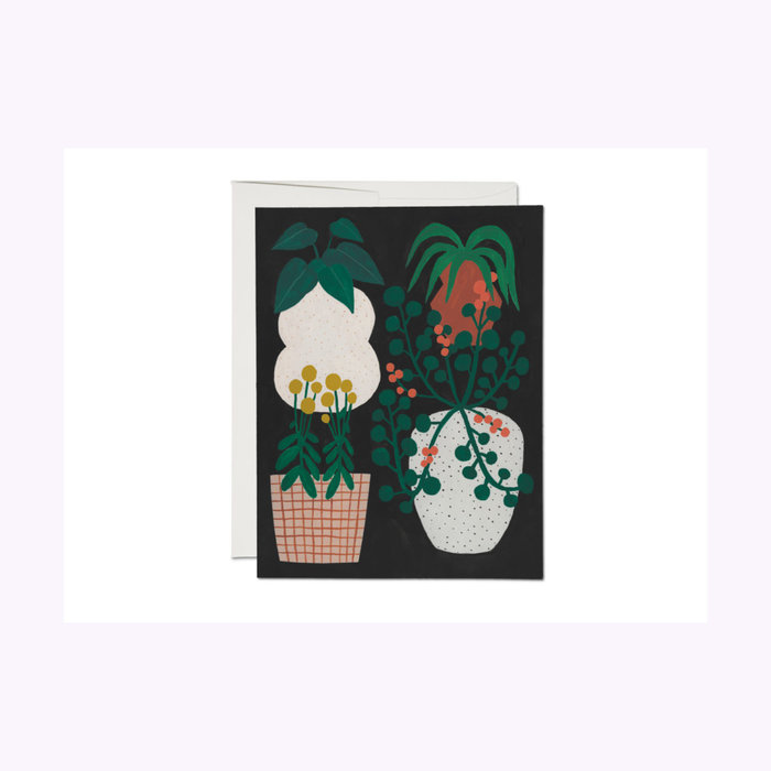 Red Cap Cards Indoor Plants Card