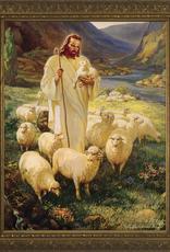 Nelson/Catholic to the Max Good Shepherd Framed Image in  Gold Frame 5 x 7‰ÛÏ