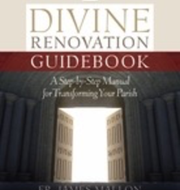 Twenty Third Publications Divine Renovation Guidebook: A Step By Step Manual for Transforming Your Parish, by Fr. James Mallon (paperback)